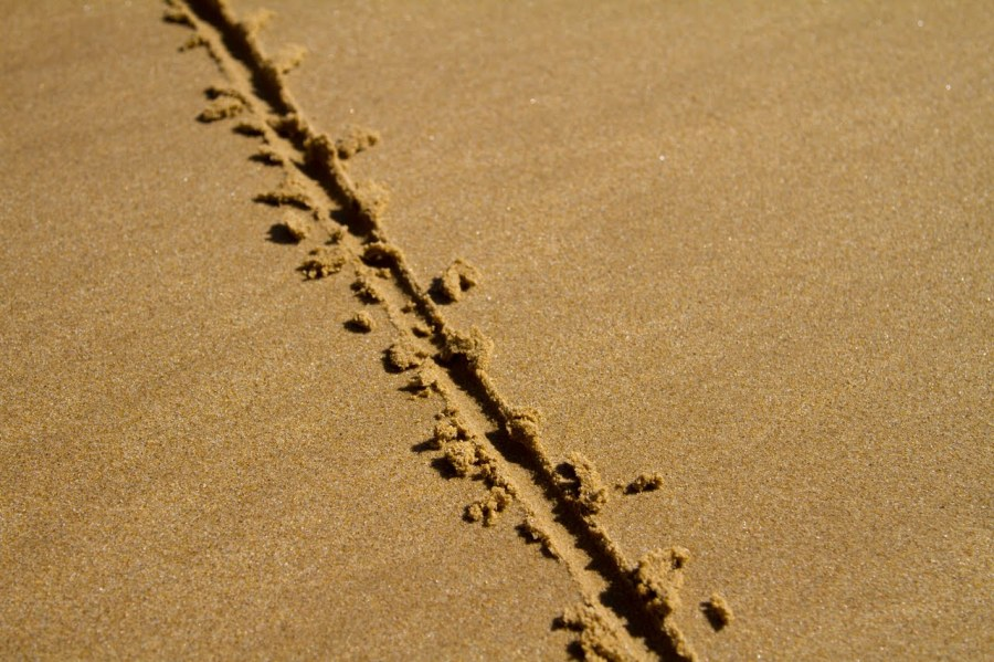 Lines in the sand: guide to healthy boundary setting. Protect yourself, increase respect from others & get what you want.